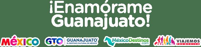 Ofertas Guanajuato Campaña Oficial LD