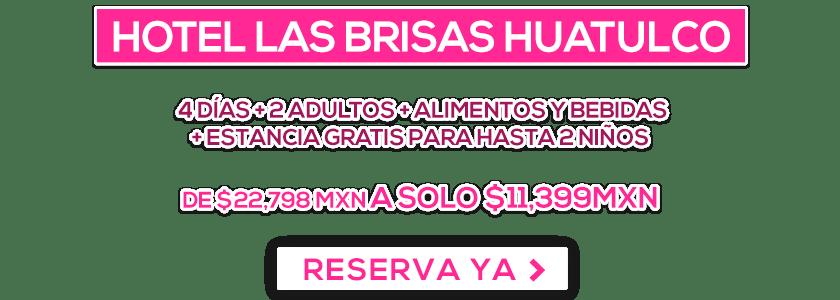 Hotel Las Brisas Huatulco Oferta LD