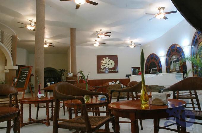 Prueba lo mejor de la comida internacional con especialidad en comida Veracruzana.