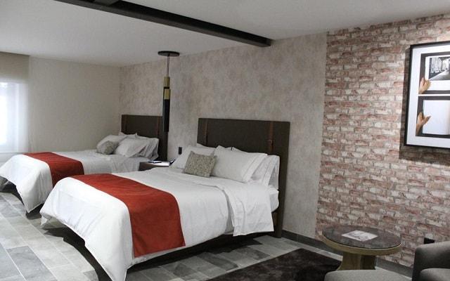 Arbórea Hotel, amplias y luminosas habitaciones