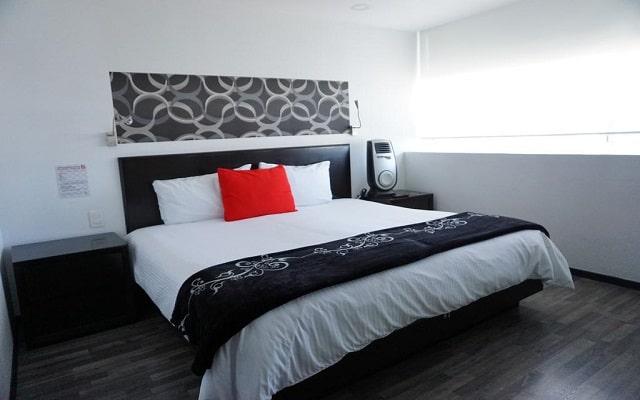 Basic Hotel, descansa en la comodidad de tu habitación