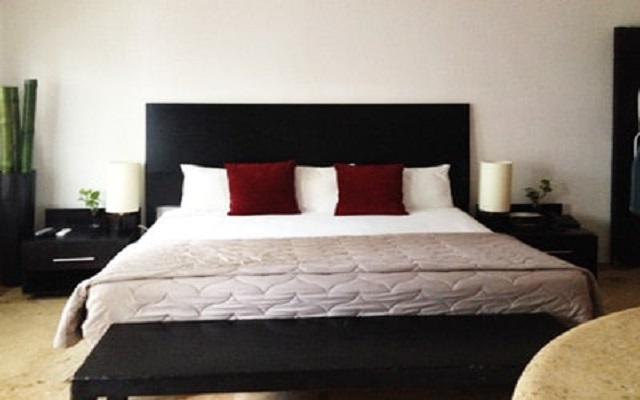 Blue Parrot Hotel 5th Avenue, habitaciones cómodas y acogedoras