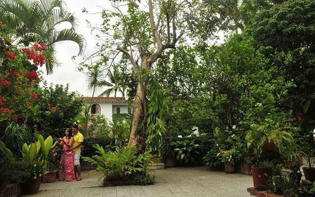 Cuenta con un jardín que alberga gran variedad de plantas