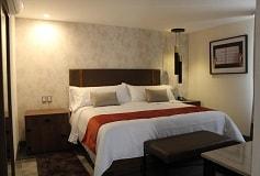 Habitación Superior Sencilla del Hotel Arbórea Hotel