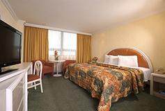 Habitación Estándar Una Cama del Hotel Hotel Benidorm