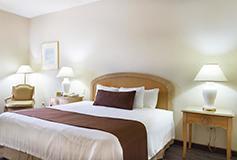 Habitación Estándar Sencilla del Hotel Best Western Plus Monterrey Aeropuerto