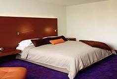 Habitación Deluxe King No Reembolsable Fumar del Hotel Camino Real Polanco México