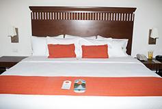 Habitación Estándar King del Hotel Castelo