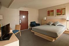 Habitación Estándar Sencilla  del Hotel City Express EBC Reforma