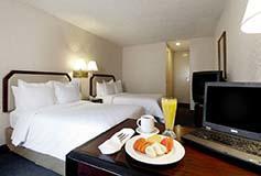 Habitación Superior Doble del Hotel Hotel Gamma Pachuca