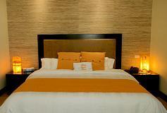 Habitación Estándar Suite del Hotel Hotel HauSuites