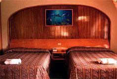 Habitación Estándar del Hotel Hotel Arrecife de Coral