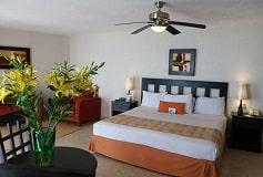 Habitación Estándar del Hotel Hotel Best Western Posada Freeman Zona Dorada