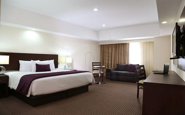 Habitación Estándar con Una Cama del Hotel Hotel Ejecutivo Express