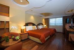 Habitación Estándar Doble del Hotel Hotel Escandón