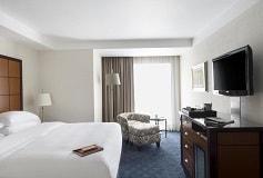 Habitación Deluxe King del Hotel Hotel Grand Fiesta Americana Chapultepec