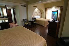 Habitación Estándar Doble No Reembolsable del Hotel Hotel Lois Veracruz