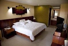 Habitación Estándar del Hotel Hotel Los Andes