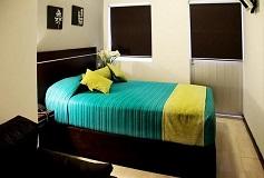 Habitación Estándar Sencilla del Hotel Hotel Misión Express Xalapa Centro