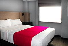 Habitación Sencilla del Hotel Hotel MX aeropuerto