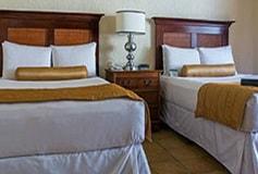 Habitación Elite Garden View Doble del Hotel Hotel Pierre Mundo Imperial Riviera Diamante Acapulco