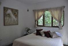 Habitación Master Suite del Hotel Hotel Jolie Jungle