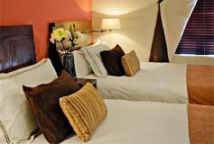 Habitación Tequilana del Hotel Hotel Villa Tequila