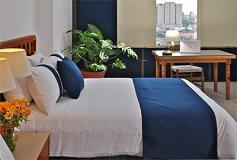 Habitación Estándar No Reembolsable del Hotel Hotel Misión Guadalajara Carlton