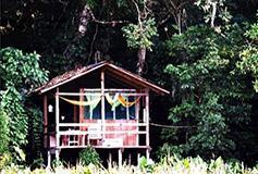 Habitación Doble del Hotel Nanciyaga Reserva Ecologica