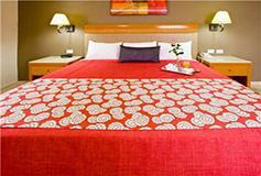 Habitación Estándar Sencilla del Hotel Olmeca Plaza