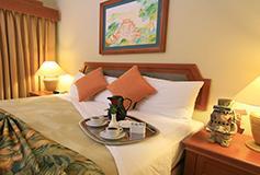 Habitación Estándar Suite de 1 Recámara con Balcón y Cocineta del Hotel Paradise Village Beach Resort and Spa