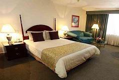 Habitación Deluxe Una Cama Queen del Hotel Pedregal Palace