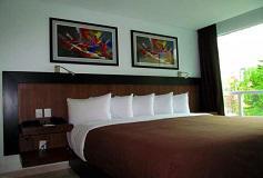Habitación Habitación Deluxe Una Cama King del Hotel Hotel & Suites PF
