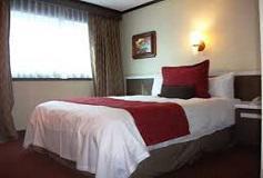 Habitación Estándar Una Cama del Hotel Ramada Reforma