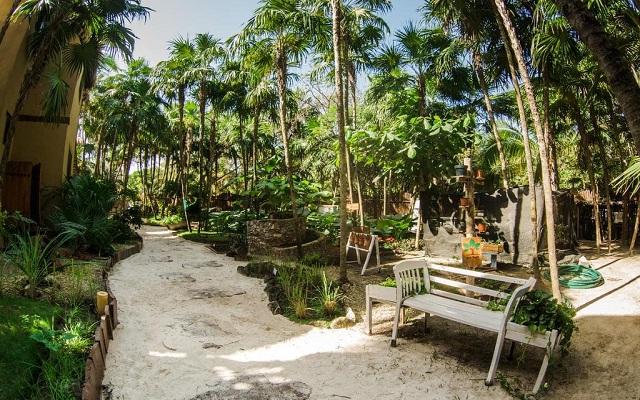 Hip Hotel Tulúm, disfruta de un ambiente natural