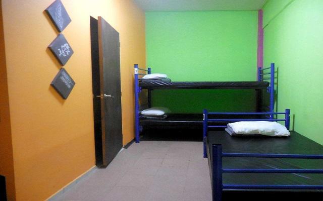 Hostel Amigo Suites, dormitorios para 3 o 4 personas