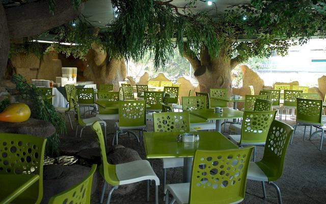 El restaurante Chile y Tortilla te ofrece servicio de desayunos