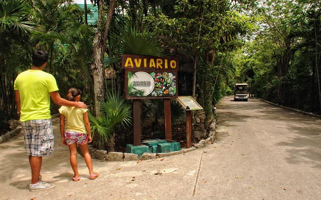 Hotel Bel Air Collection Resort & Spa Xpu-Ha Riviera Maya, aviario