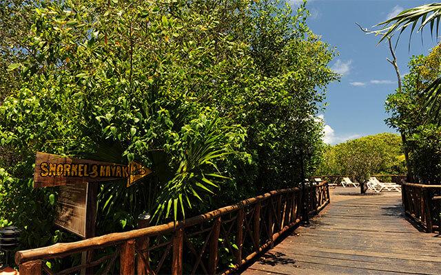 Hotel Bel Air Collection Resort & Spa Xpu-Ha Riviera Maya, ambiente selvático