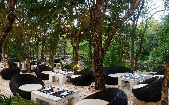 Hotel Catalonia Royal Tulum, espacios de diseño