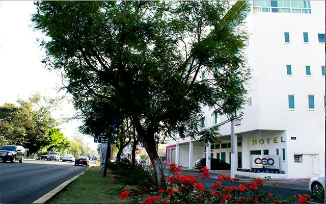 CEO Business Class en Morelia Ciudad