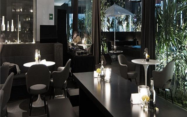 Hotel Distrito Capital, disfruta una rica bebida en el bar
