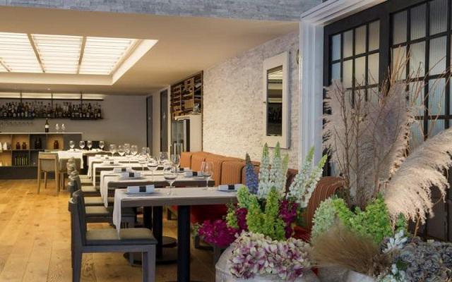 Hotel Galería Plaza Reforma, ambiente agradable para disfrutar tus alimentos