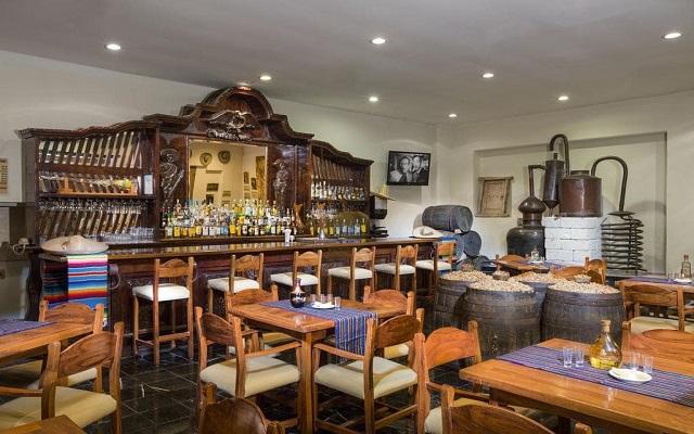 Hotel Grand Oasis Palm, relájate con una rica bebida en el bar
