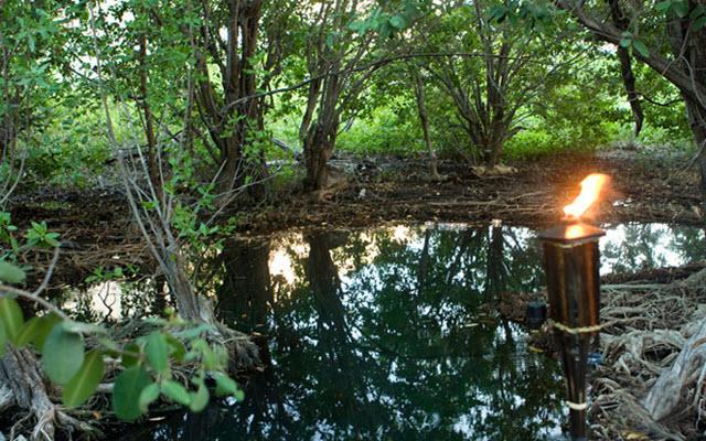 Dentro de un Parque Natural de 132 hectáreas