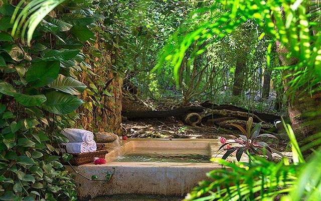 Relájate y disfruta de un ambiente de naturaleza