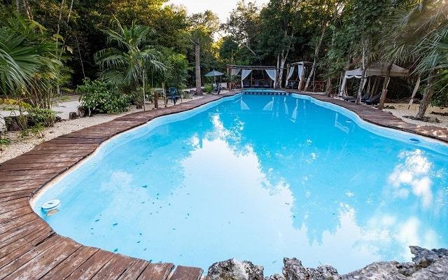 Hotel Jolie Jungle, disfruta de su alberca al aire libre