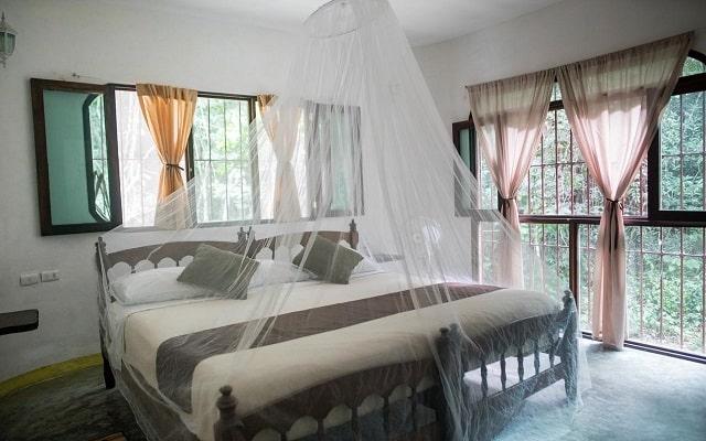 Hotel Jolie Jungle, luminosas habitaciones