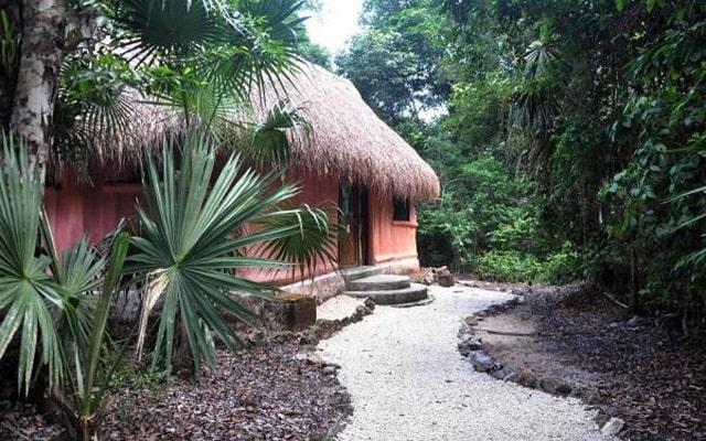 Hotel Jolie Jungle, rodeado de naturaleza