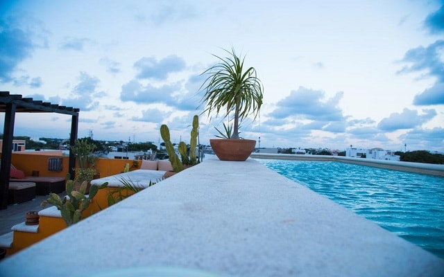 Hotel La Galería by Bunik, disfruta de su alberca al aire libre